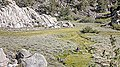 170823 Paiute BenDitto©-237 (26449837289).jpg