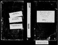1899 рік. Метрична книга села Воскресенське Херсонського повіту.pdf
