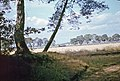 1969 - panoramio - Andris Malygin.jpg