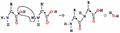 2-amino-acidsb.png