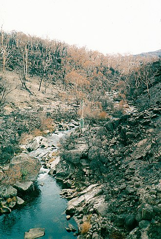 Bundara River - Image: 2003 Bushfires aftermath, Bundara River near Anglers Rest