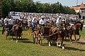 2004-Saignelegier-Marche-Concours-Wagenrennen.jpg