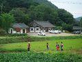 2007-Korea-Gyeongju-Yangdong Village-14.jpg