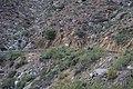 2013, Stalking the Elephant - panoramio.jpg