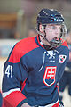 20150207 1722 Ice Hockey AUT SVK 9298.jpg