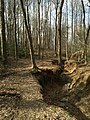 2016-03-01 14 33 03 A trail alongside a severely eroded tributary of Little Difficult Run within Fred Crabtree Park in Reston, Fairfax County, Virginia.jpg