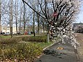 20180410 Cherry blossom trees and a fire hydrant.jpg