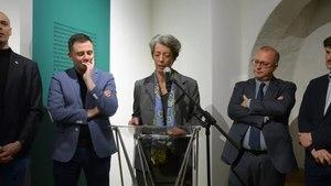File:2019-03-01 inaug-musee-beaux-arts-belfort.webm