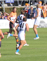 24 David Swallow 41 Dion Prestia.png