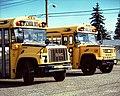2GMBBCV200schoolbuses.jpg
