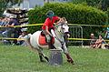 4ème manche du championnat suisse de Pony games 2013 - 25082013 - Laconnex 26.jpg