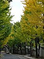 4 Chome Shirokane, Minato-ku, Tōkyō-to 108-0072, Japan - panoramio.jpg