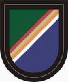 75 Ranger Regiment Regimental Flash.PNG