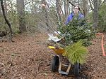 AF boosts environment with plant relocation 170106-F-AR942-076.jpg