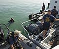 ATFP dive 130102-N-CG436-047.jpg