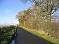 A Border country road - geograph.org.uk - 285125.jpg