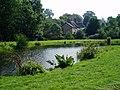 A Pond near the River Sid in Sidbury - geograph.org.uk - 1006147.jpg