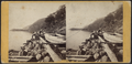 A View from Cold Spring, looking North, by E. & H.T. Anthony (Firm).png