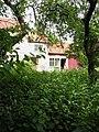 A garden full of nettles - geograph.org.uk - 1317097.jpg