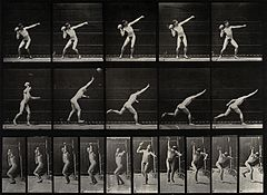 A man putting the shot. Photogravure after Eadweard Muybridg Wellcome V0048673.jpg