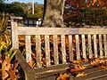 A memorial bench in the Soest Garden at CUH.jpg