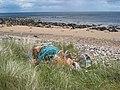 Abandoned lobster pots at Strathsteven - geograph.org.uk - 870833.jpg