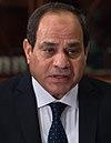 Abdel Fattah el-Sisi in 2017.jpg