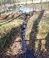 Abfluss Schwarzer See (Schlemmin).jpg