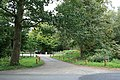 Abinger Roughs car park - geograph.org.uk - 1508172.jpg