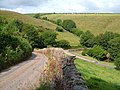 Above Little Coombe, Kingston - geograph.org.uk - 191581.jpg