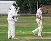 Abridge CC v Hadley Wood Green Sports CC at Abridge, Essex, England. Canon 68.jpg