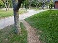 Acceso Ruta en Campo (toma dirección Noroeste) - panoramio.jpg