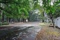 Acharya Jagadish Chandra Bose Indian Botanic Garden - Howrah 2011-02-20 1605.JPG