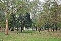 Acharya Jagadish Chandra Bose Indian Botanic Garden - Howrah 2011-02-20 1647.JPG