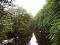 Afon Alwen - geograph.org.uk - 242565.jpg