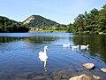 Akamatsu Pond (Okayama).jpg
