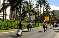 Aloha Floral Parade - Horse Poop Cleaner (5088396539).jpg