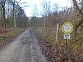 Am Zehnsberg (11).jpg