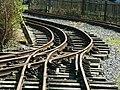 Amberley narrow gauge track.jpg