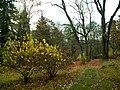 Amer. zahrada, pohled 2.JPG