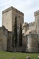 Ampudia Castillo 969.jpg