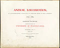Animal Locomotion I Title page (Boston Public Library).jpg