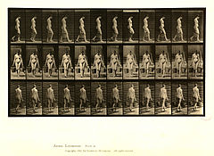 Animal locomotion. Plate 32 (Boston Public Library).jpg