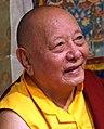 Ann Arbor, Michigan on 14 October 2012 face detail, Khenpo Karthar Rinpoche (cropped).jpg