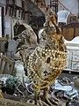 Antique Chicken Ferndale CA.JPG