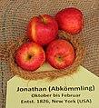 Apfel 082 Jonathan-Abkoemmling (fcm).jpg