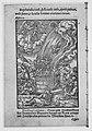 Apocalypsis S. Ioannis- Die Offenbarung S. Johannis MET MM89880.jpg