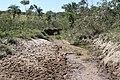 Araguainha - State of Mato Grosso, Brazil - panoramio (1050).jpg
