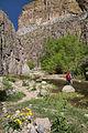 Aravaipa Canyon Wilderness (15411170042).jpg