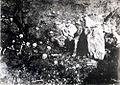 Armenian Skulls of Genocide.jpg